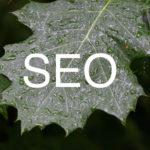 質の高いWebサイトとは?被リンクや文章量に関する根本的な勘違いとSEO対策の近未来について考えた